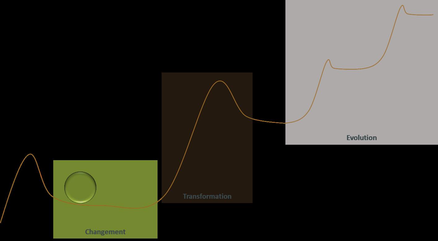 Différence d'état entre changement, transformation et évolution